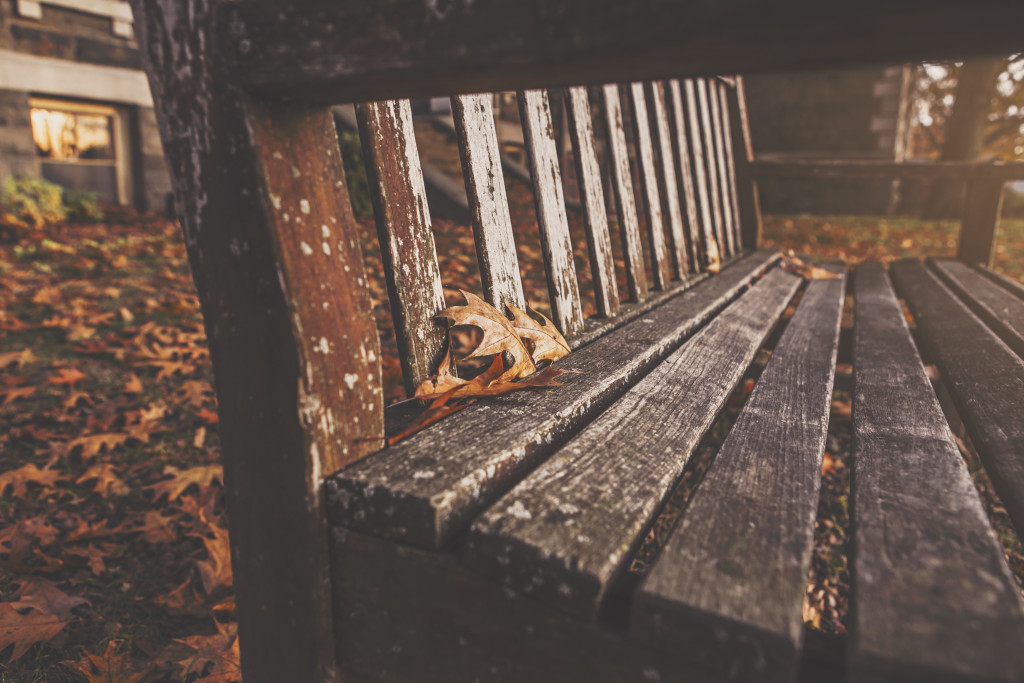 leaves bench